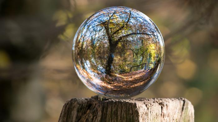 Positiva miljöeffekter rapporteras